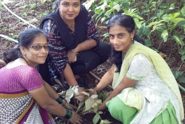 WORLD ENVIRONMENT DAY 05th June 2018